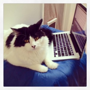 Beethoven looks for typos in my latest draft.