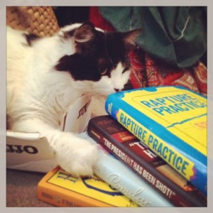 Beethoven helps me read all the fun books in preparation for the LA Times Festival of Books panel on YA non-fiction!
