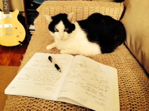 Oreo is very harsh with his criticism of my writing. Everyone's a critic! Sheesh!