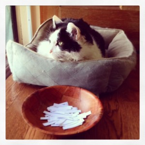 Oreo wonders who will win the 2014 Annual NAPIBOWRIWEE random drawing door prize contest?