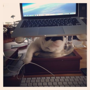 Charlotte helps me write in the Writing Batcave! :)