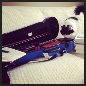 My Summer Schedule: Write. Practice violin. Read. Play with cats. Lather, rinse, and repeat. :)